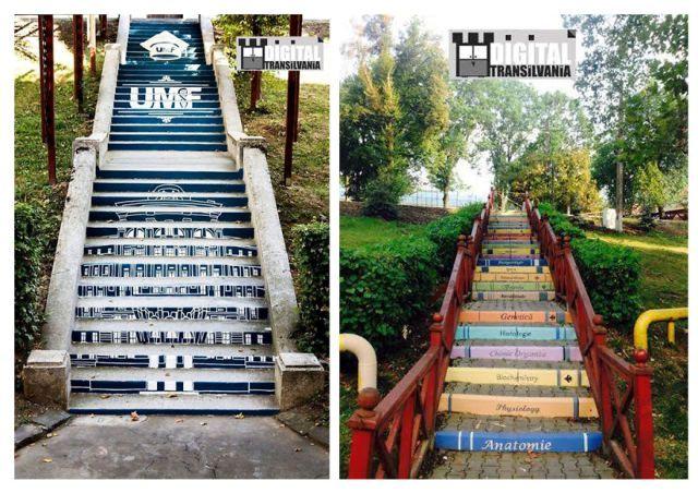 UMF-2-stairs__880