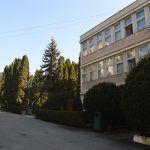 Liceul Ion Vlasiu (31)