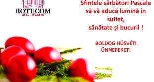 Rotecom
