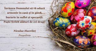 felicitare Havrilet!